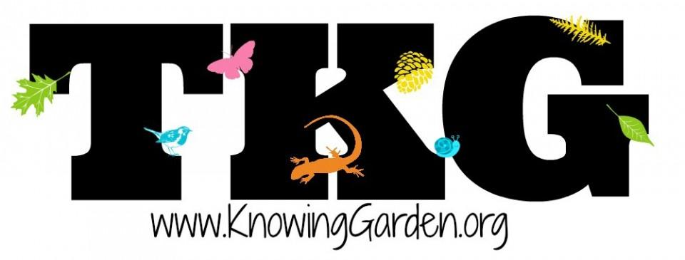 TKG LEARN: Adventures in Organizing